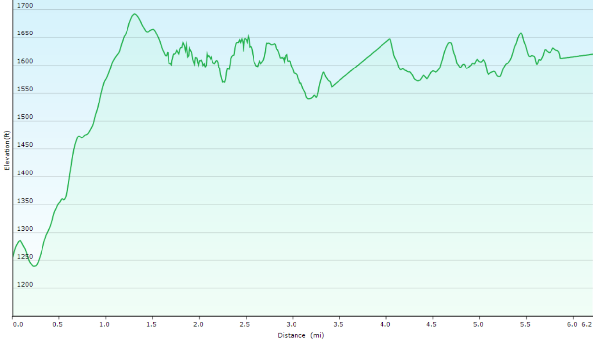 Elevation profile of Peter's Creek Trail