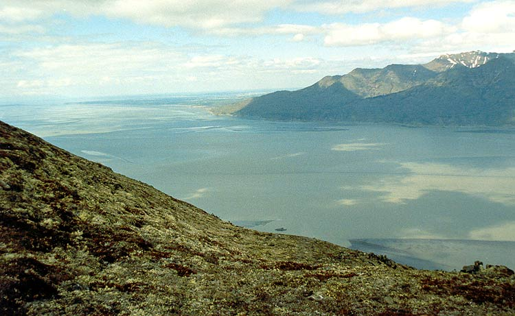 View of Cook Inlet and Turnagain Arm.
