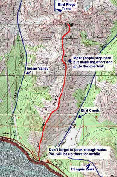 Bird Ridge topo map
